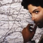 Prince &#8211; Musicology