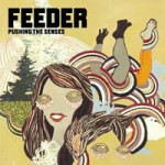 Feeder – Pushing the senses
