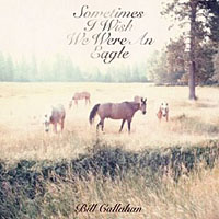 Bill Callahan- Sometimes I wish we were an eagle