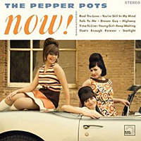 now_pepper_pots_20090528211617