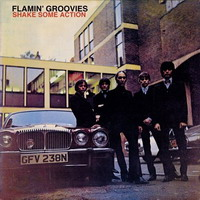 Flamin' Groovies – Shake some action