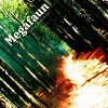 Megafaun – Gather, form and fly