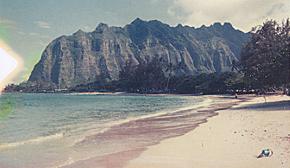 Blackbird_Hawaii