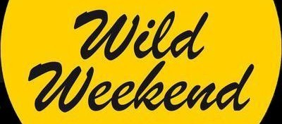 wildweekend_malaga2010