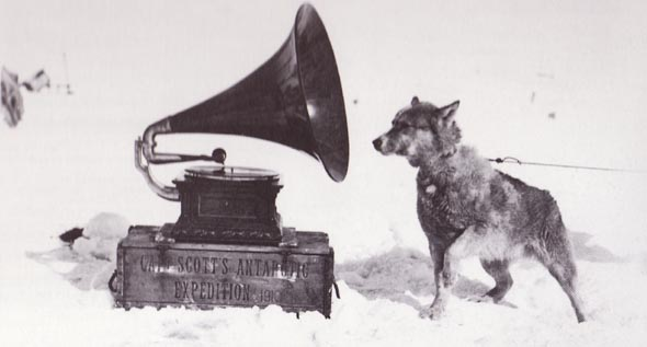 Dog_and_gramophone_-_Terra_Nova_Expedition (1911)