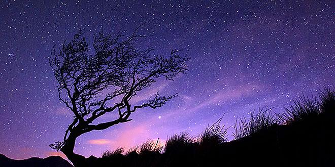 Photo of Música para las estrellas
