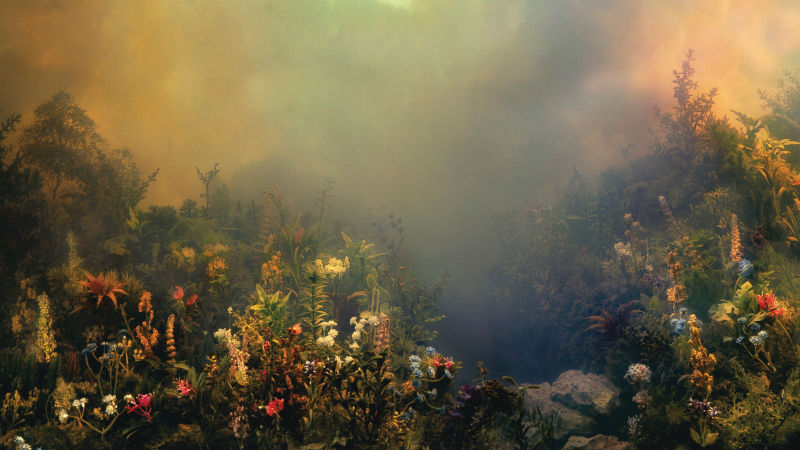 Photo of [Reseña] Joanna Newsom – Divers