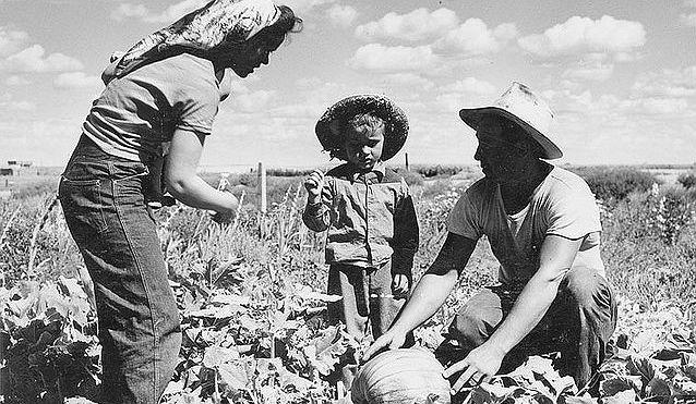 Women Farming (3)