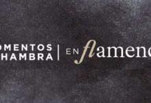 Photo of Ciclo Momentos Alhambra En Flamenco