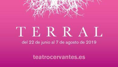 Photo of Programación del Festival Terral 2019