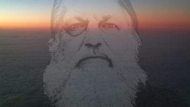 Photo of [Especial Recomendación] Robert Wyatt