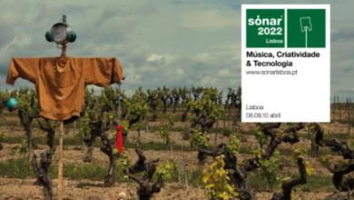 Photo of El Festival Sónar llegará a Lisboa en 2022